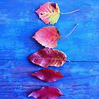 Autumn Leaves on Blue Vintage Table by Olivia Joy StClaire