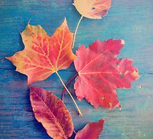 Autumn Leaves on Blue Vintage Table 2 by Olivia Joy StClaire