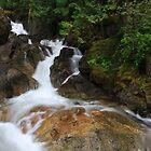 Deception Falls, Washington, USA by DArthurBrown