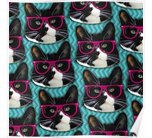 Hipster Glasses Kitty Pattern  Poster