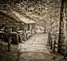 The old cabin in sepia by Conjon863