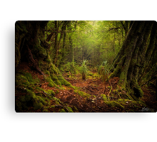 The Ballroom Forest Canvas Print