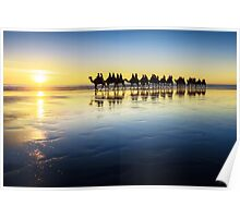 The Cable Beach Camels Poster
