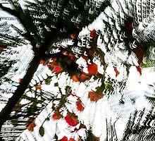 Chiaroscuro #01 by LouD