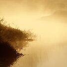18.10.2014: October Morning at Loimijoki River II by Petri Volanen