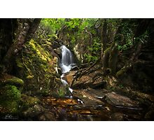 The Crater Creek Falls Photographic Print