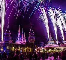 Wishes at Magic Kingdom. by Diana Kelly