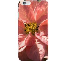 Sunny Pink Poinsettia - Vivacious Christmas Greetings iPhone Case/Skin