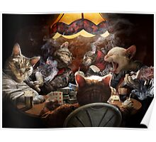 Cats play poker Poster