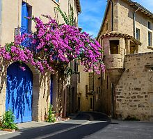 A street corner in the historical centre of Pezenas, Languedoc, France by 7horses