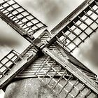 Bembridge Windmill #3 by manateevoyager