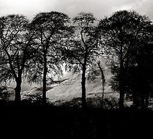 The Ochil Hills by 242Digital