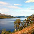 Loch Tay & Ben Lawers by Stuart  Fellowes