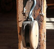 Block and Tackle 3 by marybedy