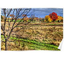 Maple and Oak Fall Colors Poster