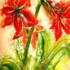 Flowers...Christmas Amaryllis by © Janis Zroback