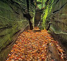 Hidden Passageway by Kenneth Keifer