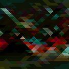 Geometric Pattern 2 by Jamie Harrington