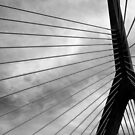 Zakim 7 Black and White by marybedy