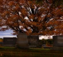 Final resting place by vigor