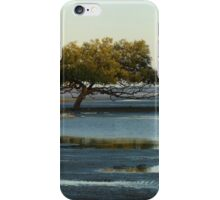 Clairview Mangroves  Panorama  iPhone Case/Skin