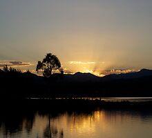 Pond Rays by peterhau