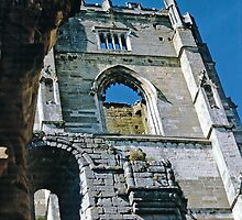 Fountains Abbey4 by Priscilla Turner