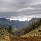 Langdale Views by VoluntaryRanger