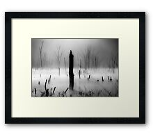 Fog and Light Framed Print