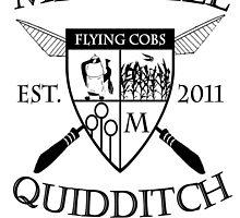 Mitchell Quidditch Design 2 by IN3004