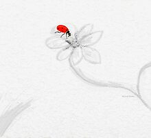 Ladybug on White Invisible Flowers by Angela Stanton