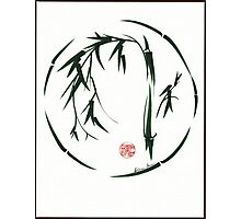*  VISIONARY Original sumi-e enso ink brush wash painting Photographic Print
