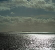 Out to Sea by Nick Jenkins