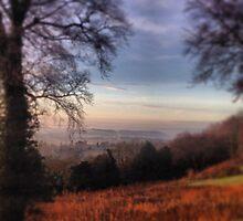 Reigate Hill - An Autumn Day by AngieSurrey