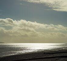 Steepholm Island by Nick Jenkins