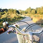 Bicycle ride by NAAY