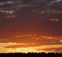 Orange Sunset by Richard  Burchell
