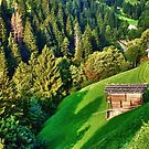 Zillertal Valley by Xandru