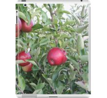 Red Apples iPad Case/Skin