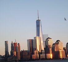 Twilight View of Lower Manhattan Skyline, New World Trade Center, New York City by lenspiro
