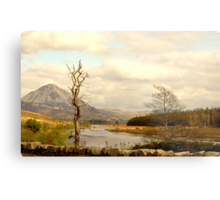 Mount Errigal From The Lodge Metal Print