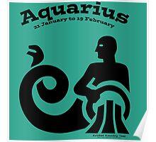 Signs of the Zodiac:   AQUARIUS Poster