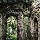 Ruins at side of Church Abbey Dore England 198405170071 by Fred Mitchell