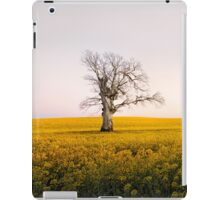 Canola Sunrise - NSW, AUSTRALIA iPad Case/Skin