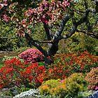 Abkhazi Gardens Victoria Vancouver Island BC by AnnDixon