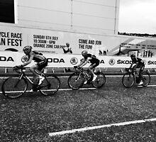 Tour de France 4 by Robert Steadman