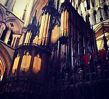 Organ pipes, Lincoln Cathedral by Robert Steadman