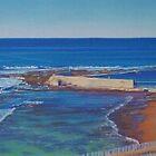 Cowrie Hole, Newcastle, NSW, Australia by Carole Elliott