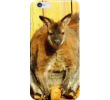 Resting Wallabies iPhone Case/Skin