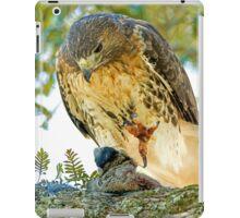 Red Tailed Hawk iPad Case/Skin